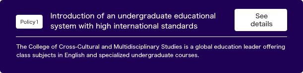 Introduction of an undergraduate  educational system with high international standards