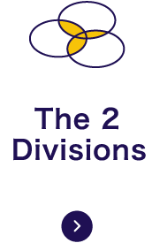 The 2 Divisions