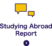 Studying Abroad Report